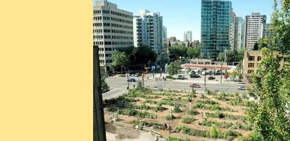 Die neuen Gartenstädte